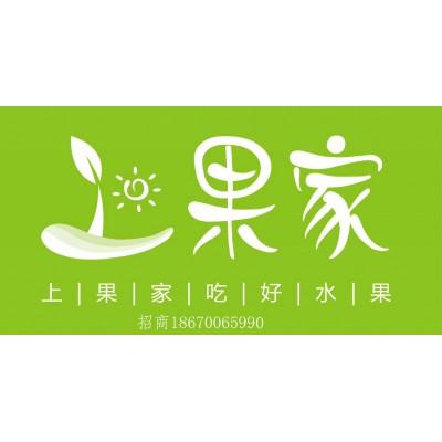 湖南水果店加盟,上果家品牌加盟项目介绍书