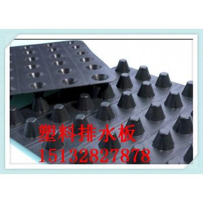 安平县塑料排水板蓄排水板土工格栅厂家价格