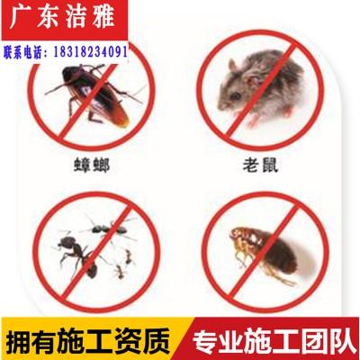 肇庆四会大旺高新区白蚁防治预防中心