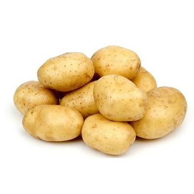 肇庆土豆蔬菜配送