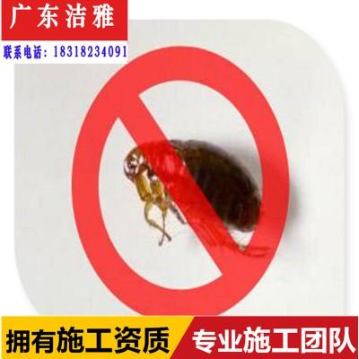 端州区白蚁防治/肇庆端州区房屋白蚁预防