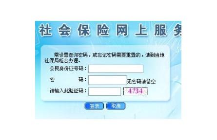 中山市社保缴费记录查询是需要登录哪个平台?